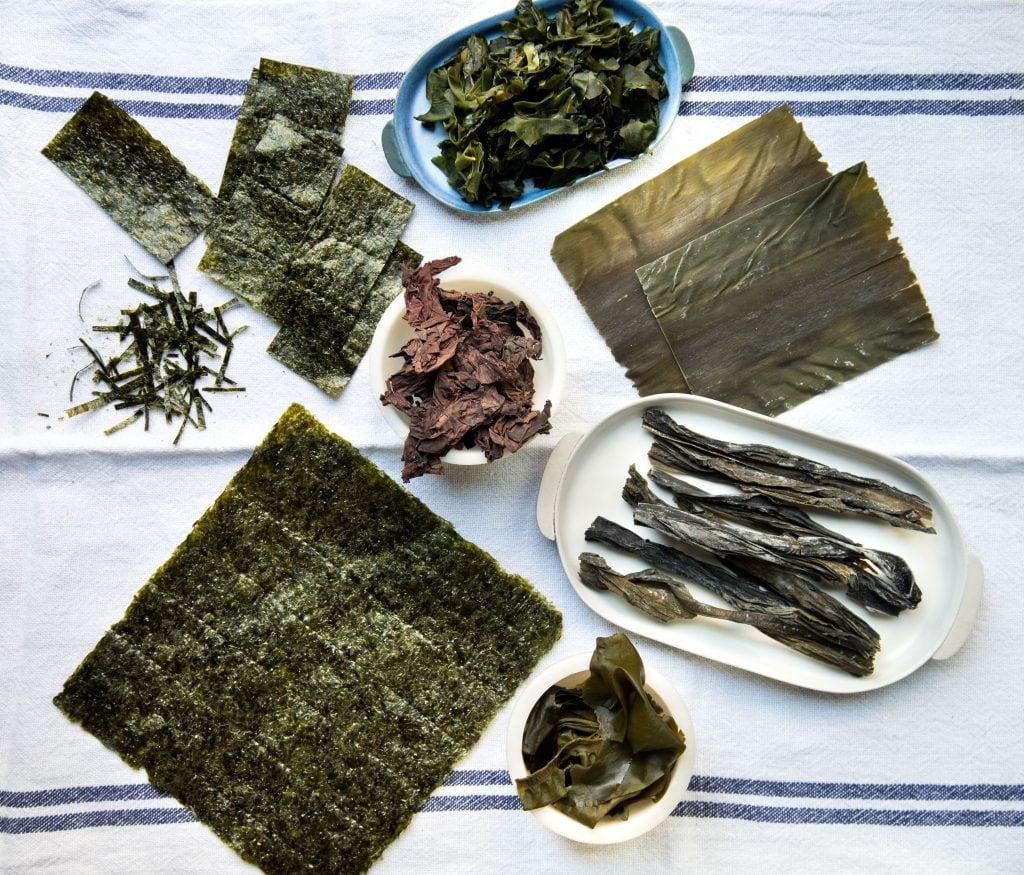 Algas Kombu - SushiOle